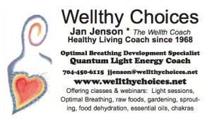Wellthy Choices banner