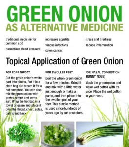 green onion medicine uses
