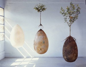 forget-coffins-organic-burial-pods-will-turn-your-loved-ones-into-trees